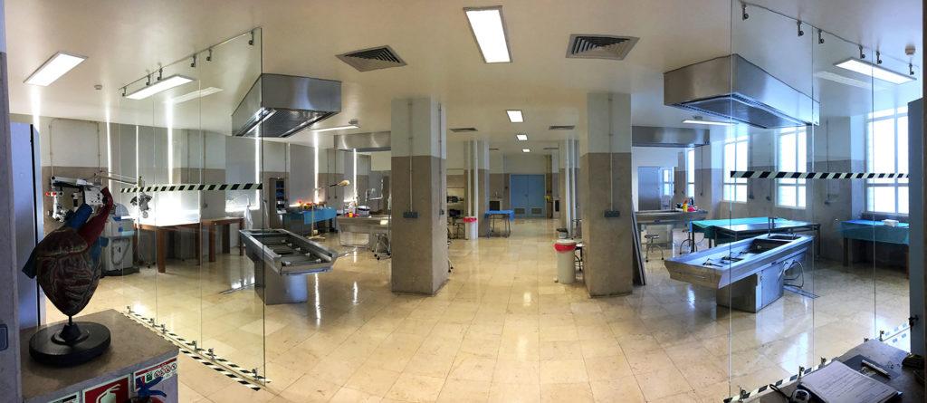 Laboratório- Faculdade de Medicina de Lisboa